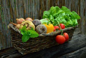 田原市のここちeeハウスHPの画像野菜