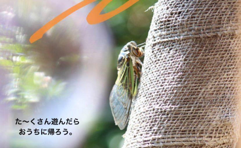田原市ここちeeハウスストーリー20190902